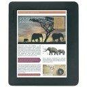 Калъфи за PocketBook Color Lux - 801